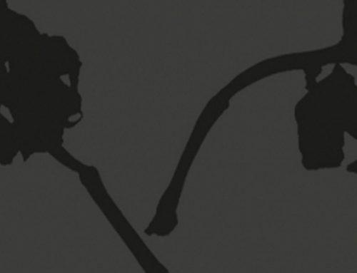 LE CAPITOZZE – Chianti Classico D.O.C.G Gran selezione