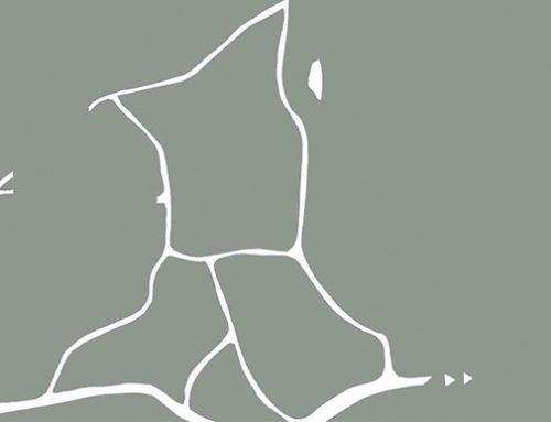 LAUDEMIO-Olio Extra Vergine di Oliva