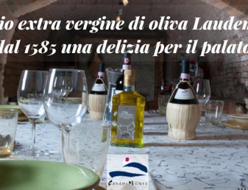 L'olio extra vergine di oliva Laudemio: dal 1585 una delizia per il palato