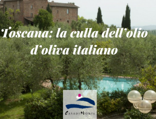 Toscana: la culla dell'olio d'oliva italiano