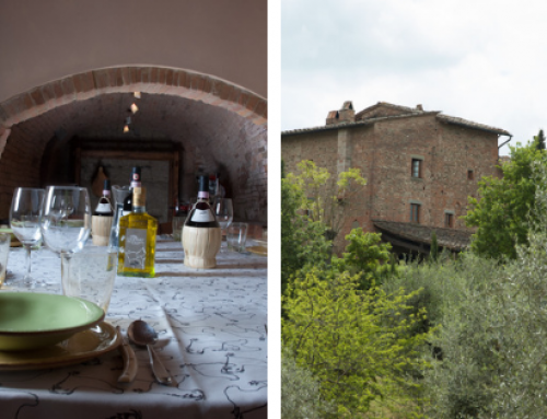 Dalla potatura alla tavola: le fasi di lavorazione dell'olio d'oliva