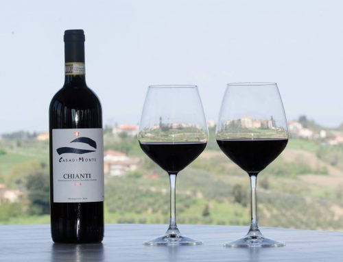 Chianti Classico D.O.C.G.: un sorso di… vino!